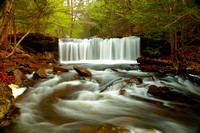"""Ricketts  Glen State Park"" Pa. ""Waterfalls"" Spring 2015"