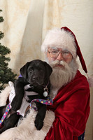 Susquehanna Service Dogs Holiday Party 2015