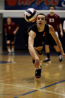District III AA Volleyball Boys Championship Northeastern vs Manheim Central  05.24.2013