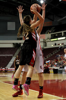 Dover vs Cumberland Valley Girls District III AAAA Playoff Basketball Game 02.25.2014