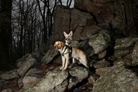 SSD Boomerang & Parker at Samuel S. Lewis State Park (East York Pa.) 2014