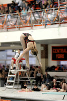 Central York vs Dallastown Diving 02.02.2012
