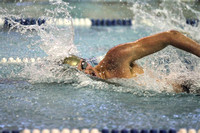 Dallastown vs Red Lion Swim Meet 01.09.2014
