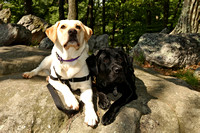 "SSD Boomerang and SSD Harlem ""Enjoying Their Vacation with Another Photo Shoot!"""